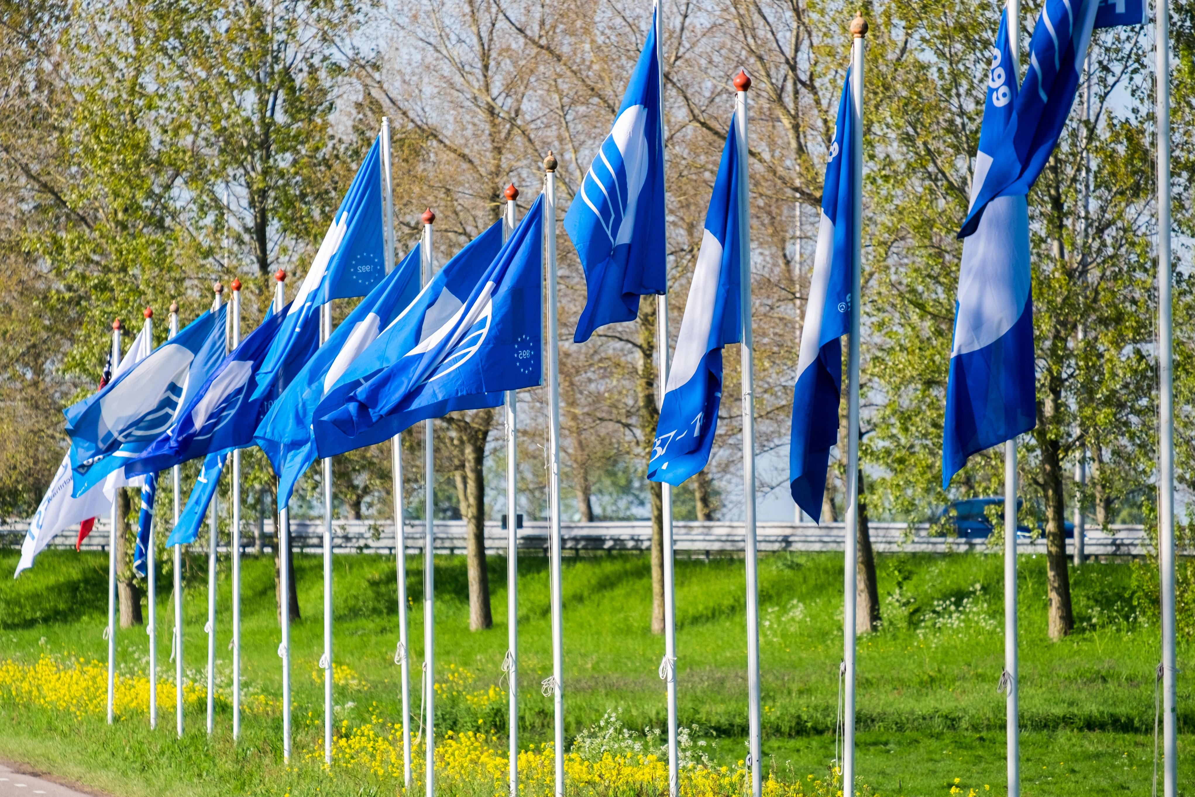 blauwevlag-1.jpg