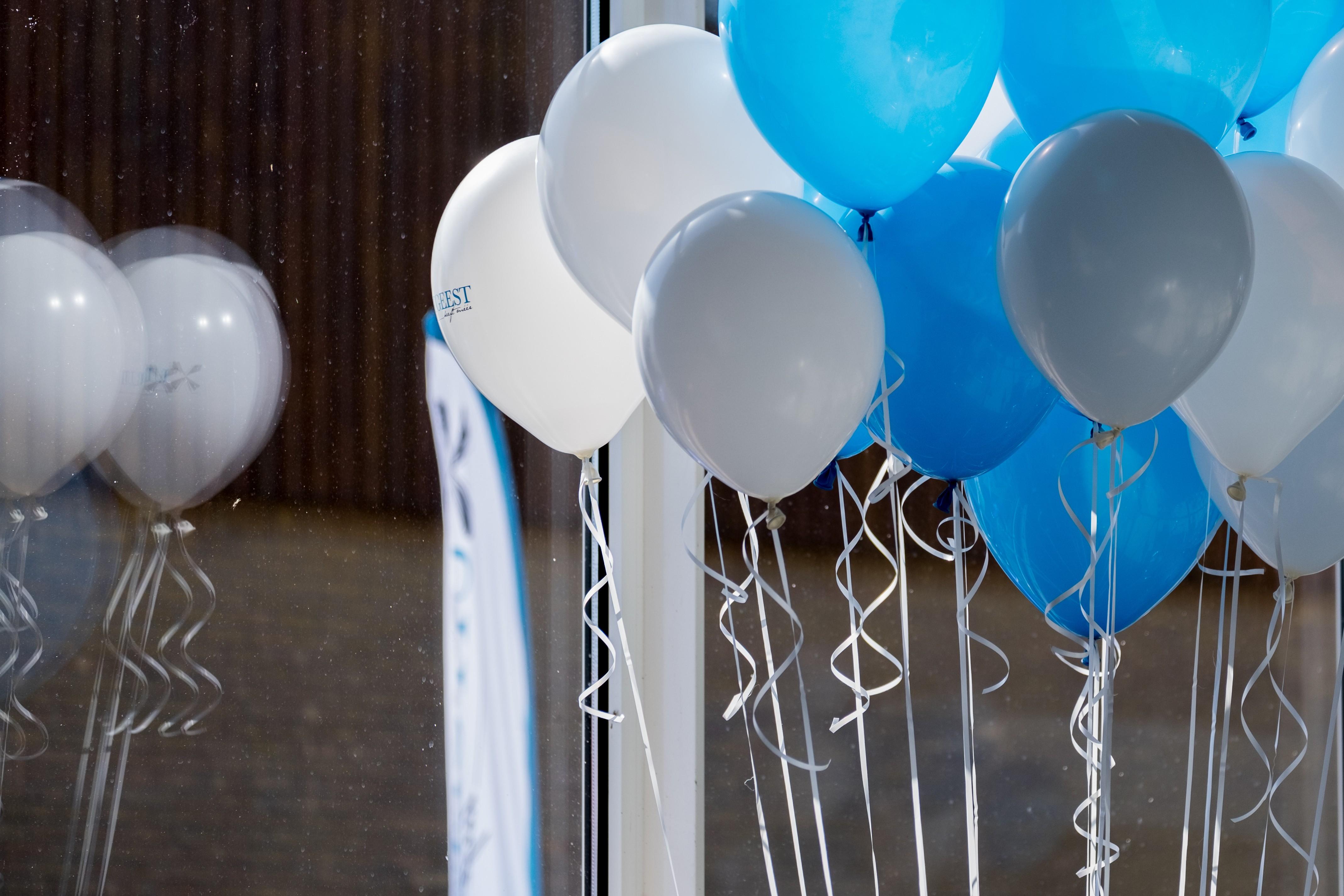 blauwevlag-4.jpg