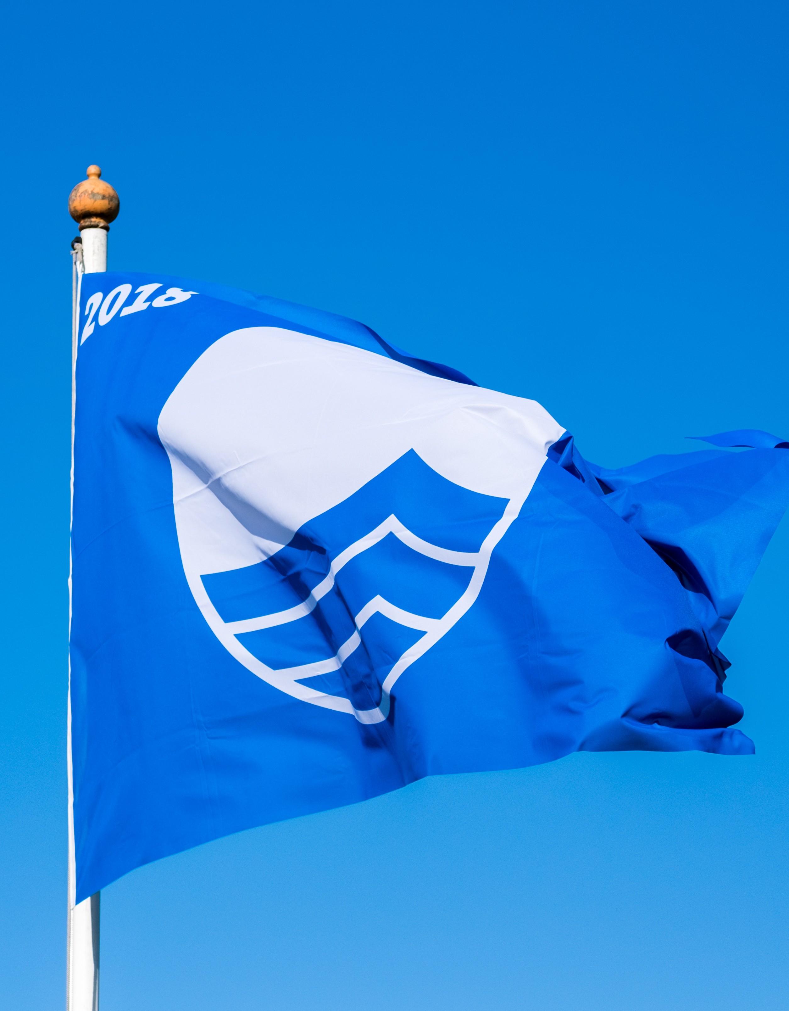 blauwevlag-2.jpg