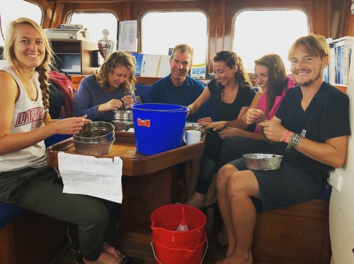 BTOWU Expedition Denmark 2018 analyzing plastic sample