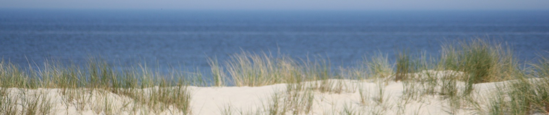 Header Strand Duin Links